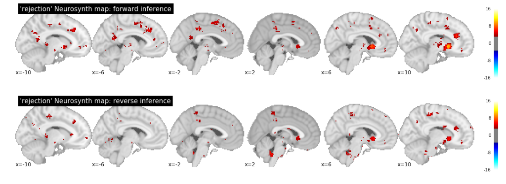 "Meta-analysis of ""rejection"" in Neurosynth (current database version, 58 studies)."